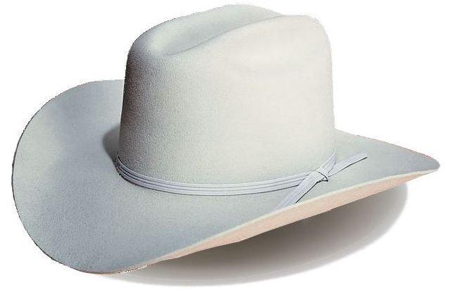 F36 Western Style Felt Hat
