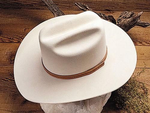 Rancher Western Hat